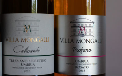 On the Trail of the Fearsome Sagrantino (Part One)
