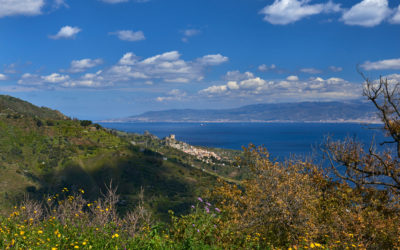 Bonavita Faro – Living The Good Life…